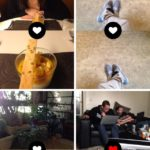 #feed @frontbackapp