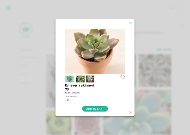 Succulents Web Gallery Gallery Cart Grid Homepage Mac Product View Web  - UI Garage - The database of UI